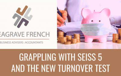 Grappling with SEISS 5 and the new turnover test