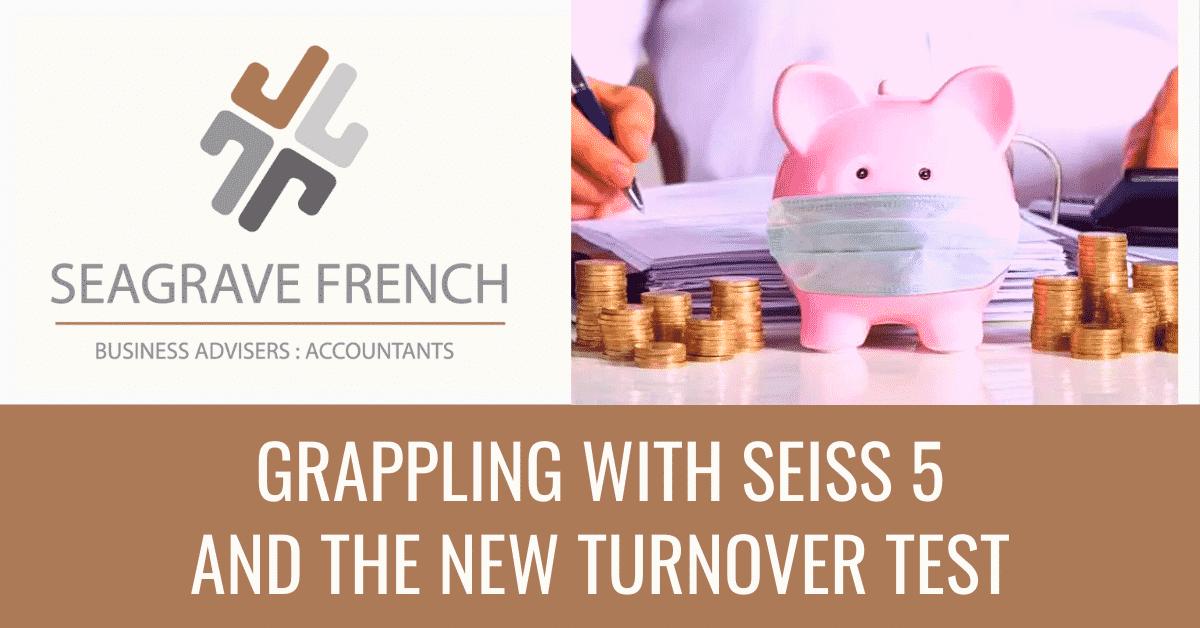 Featured Page Image for grappling with seiss 5 and the new turnover test
